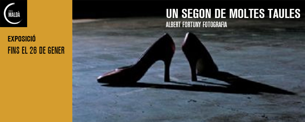 albert fortuny no info
